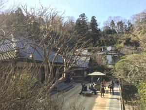 明月院 鎌倉市 山ノ内