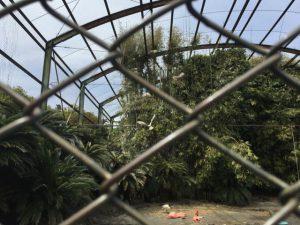 熱川 バナナワニ園 分園